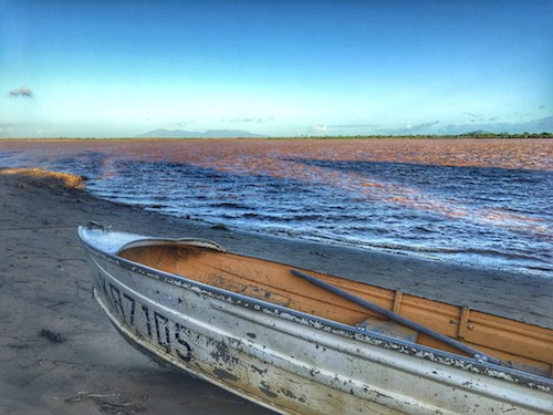 Things to do in Ayr (QLD) - Burkedin River
