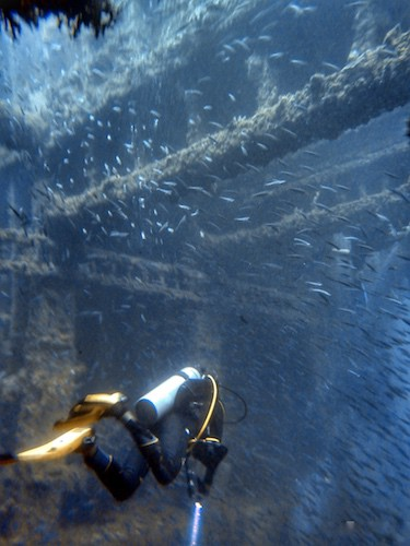 SS Coolidge dive inside the wreck