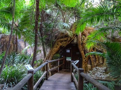 Mount Tamborine Glow Worm Cave Entrance