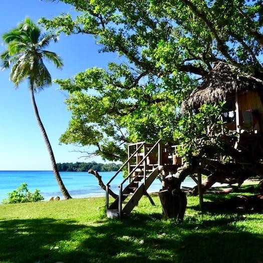 Treehouse Port Olry Beach Espiritu Santo