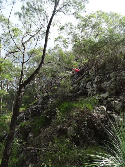 Glasshouse Mountain Walks - Mount Coochin walk - going down the east peak