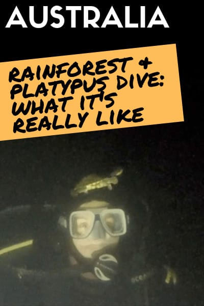 Mackay-Scuba-Diving-Rainforest-What-to-expect-with-the-platypus-dive