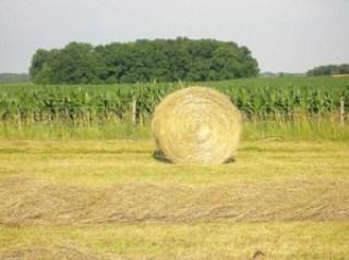 round bale of hay 10
