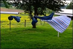 clothesline 12
