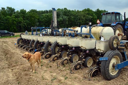 12-row corn planter