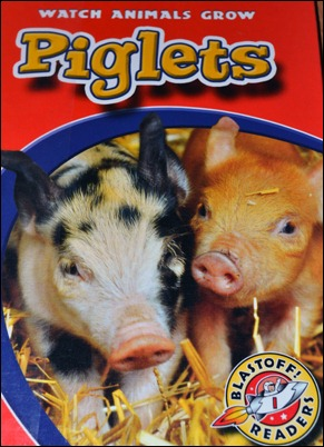 Piglets cover