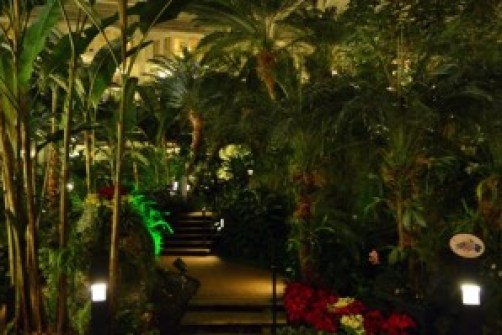 Opryland at night2