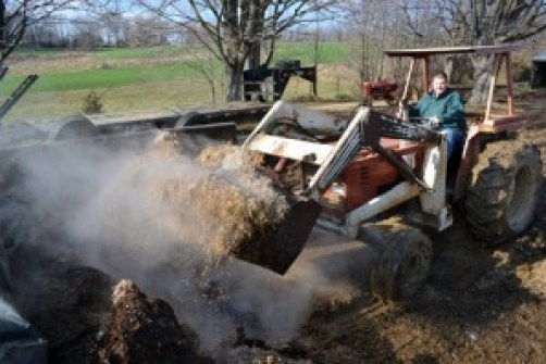scoop full of silage