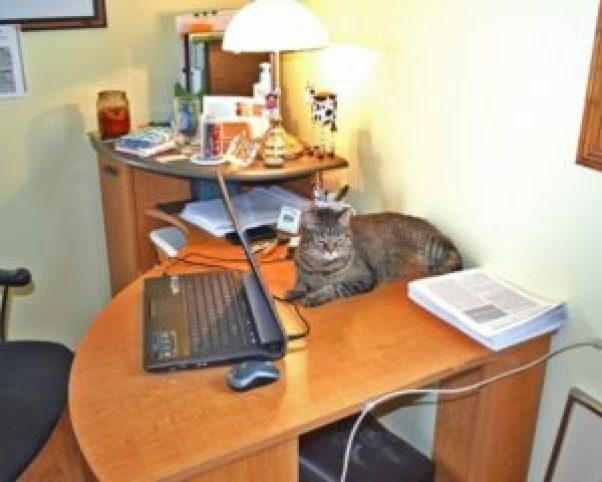 Martin helping at work