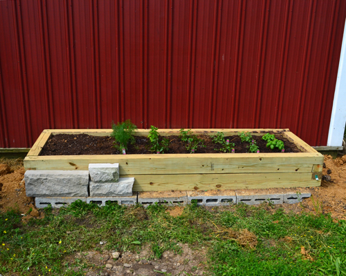 herb garden with stone face