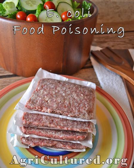 E. coli food poisoning