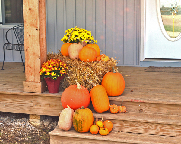 pumpkins, mums, and straw bales for fall decorations