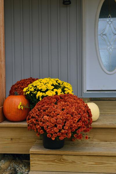 front porch left