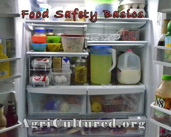 Food Safety Recap - My Fearless Kitchen