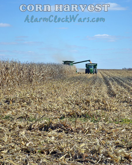 corn harvest, unloading on the go
