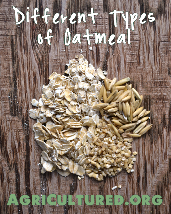 There are different types of oatmeal. No matter which is your favorite, all oats are a whole grain food, and all oatmeal has similar nutrition values.