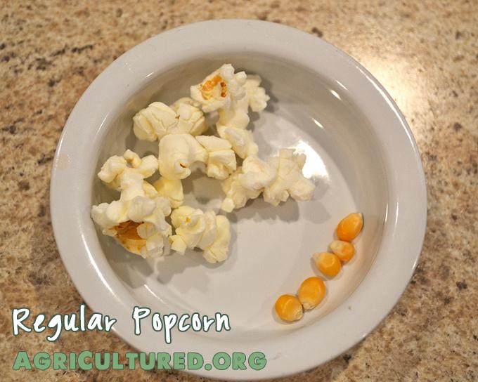 regular popcorn