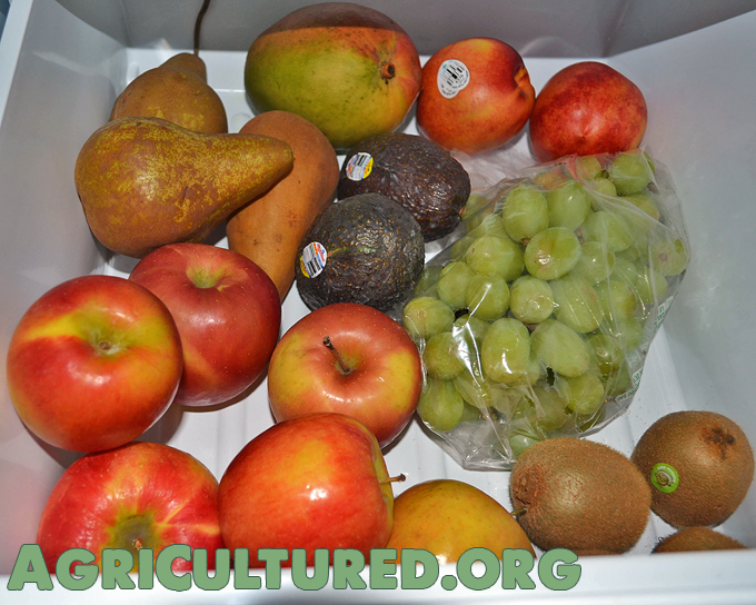 Foods like apples, pears, mangoes, grapes, avocados, and green onions should be stored in the low humidity drawer.