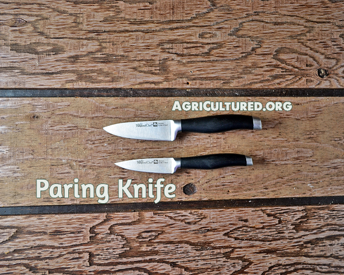 Paring knives are great for chopping small pieces of food, or peeling fruits and vegetables.