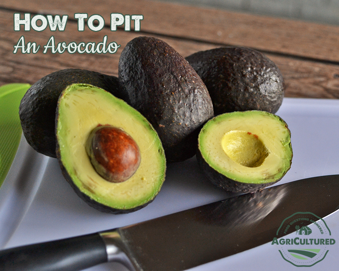 How to Pit an Avocado on AgriCultured. If you've never prepared one before, avocados can look intimidating. Getting the pit out of an avocado is not that hard, once you know a few simple tricks.