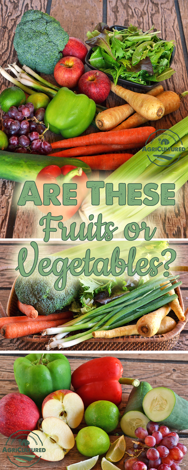 What's the Difference Between Fruits and Vegetables? - My ...