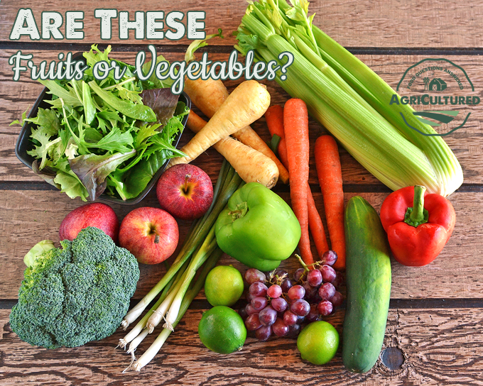 difference between fruit and vegetable why fruits are healthy