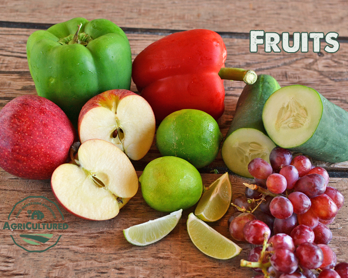 Fruits are the edible part of the plant that contain the seed.
