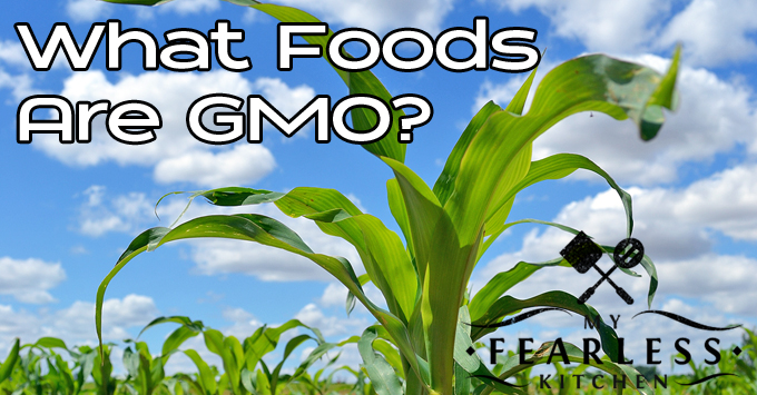 What Foods Are GMO? from My Fearless Kitchen. Have you ever wondered what foods are GMOs? Get the scoop here, and see why it's not as bad as you've heard. GMOs can be helpful to farmers and to you!