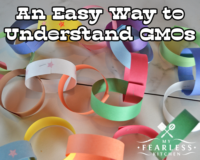 An Easy Way to Understand GMOs from My Fearless Kitchen. If you just want a short, simple explanation about what a GMO is, this post is for you. See how DNA is like a paper chain and how a GMO is made.