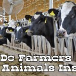 Why Do Farmers Keep Animals Inside?