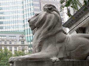 800px-New_York_Public_Library_Lion-27527