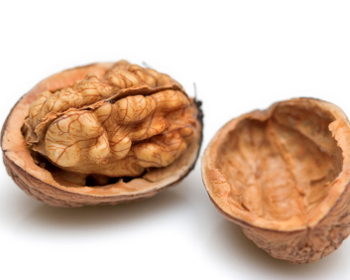 Treatment of muscle spasm - Walnut - Image - 4