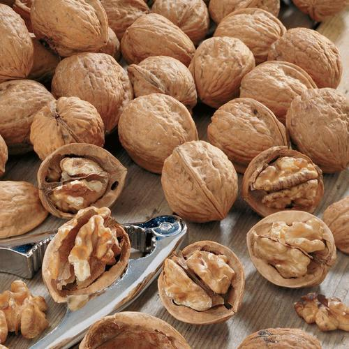 Home remedy to complete calcium deficiency - Walnut- Image -2