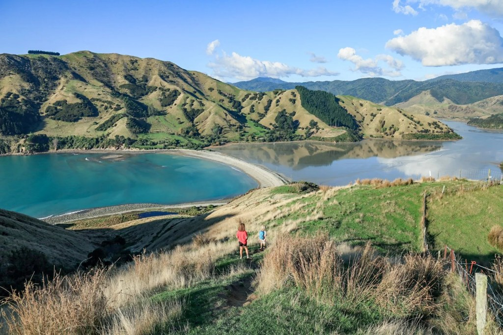 Cable Bay - Nelson day trips