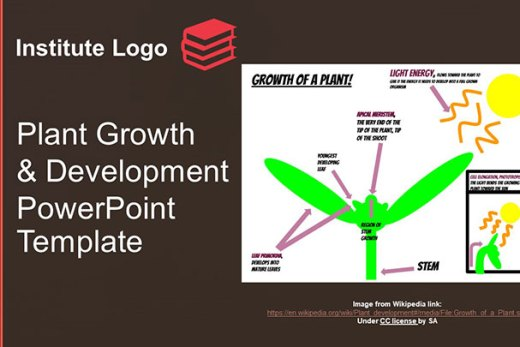 free-plant-growth-and-development-google-slides-themes-ppt-presenattion