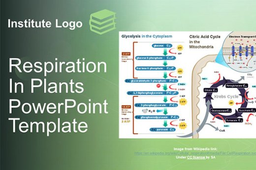 free-respiration-in-plants-google-slides-themes-ppt-template-presentation