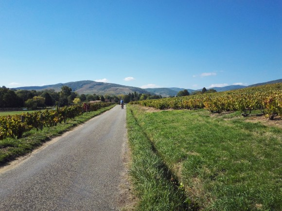 MyFrenchLife™ – MyFrenchLife.org - Day trips from Lyon - Lyon day trip - Beaujolais