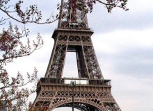 MyFrenchLife™ – MyFrenchLife.org - Paris in March - 2017 - Paris in spring - whats on - Eiffel Tower - Flowers