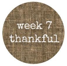 week 7 button