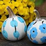 marimekko pumpkins - myfrenchtwist.com