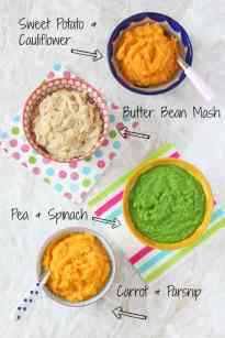 4 Month Old Puree Food Recipes