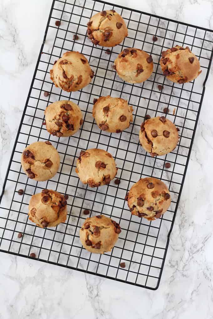 A delicious Chocolate Chip Muffin recipe packed full of healthy ingredients like oats, greek yogurt and bananas. Perfect for an afternoon snack for kids or to add to their lunch box!
