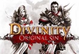 Divinity: Original Sin Review