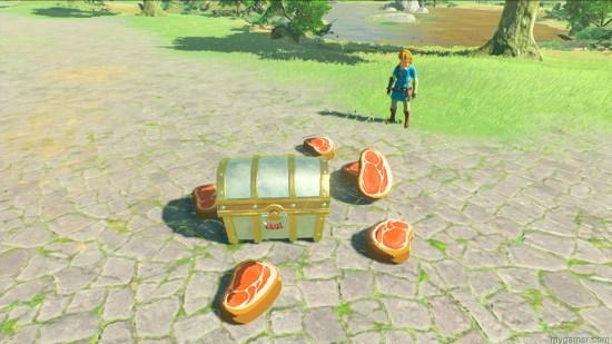 Zelda Breath amiibo meat