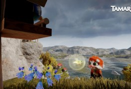 tamarin is a 3d action-adventure crafted by  rare veterans Tamarin is a 3D action-adventure crafted by  Rare veterans – trailer here Tamarin