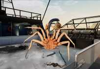 deadliest catch: the game details and release date here Deadliest Catch: The Game details and release date here Deadliest Catch The Game 02 press material