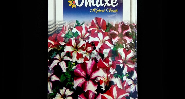 Petunia Ultra Star – (50 seeds) – Omaxe - Indian