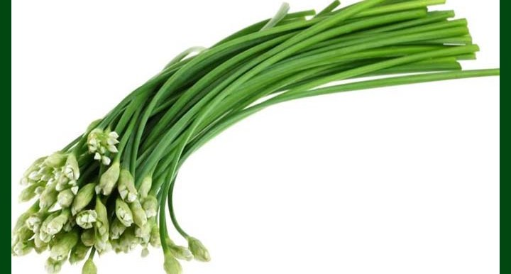 Chive - Erba Cipollina - 80 to 100 seeds - MGS1346