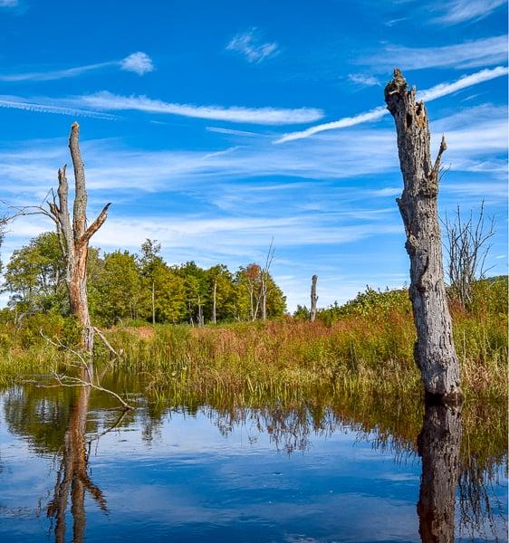 The Berkshires in Western Massachusetts.