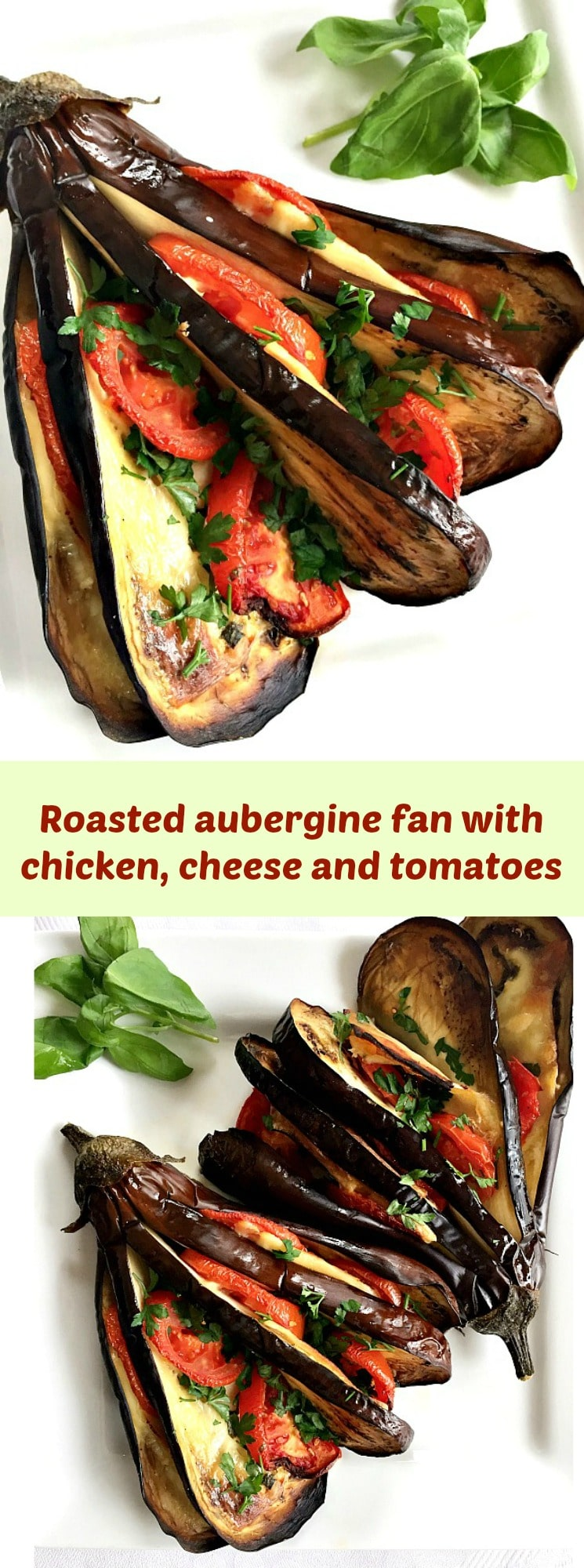 Roasted aubergine fan with chicken, cheese and tomatoes